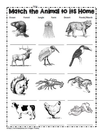 Animal and their Habitats Worksheets