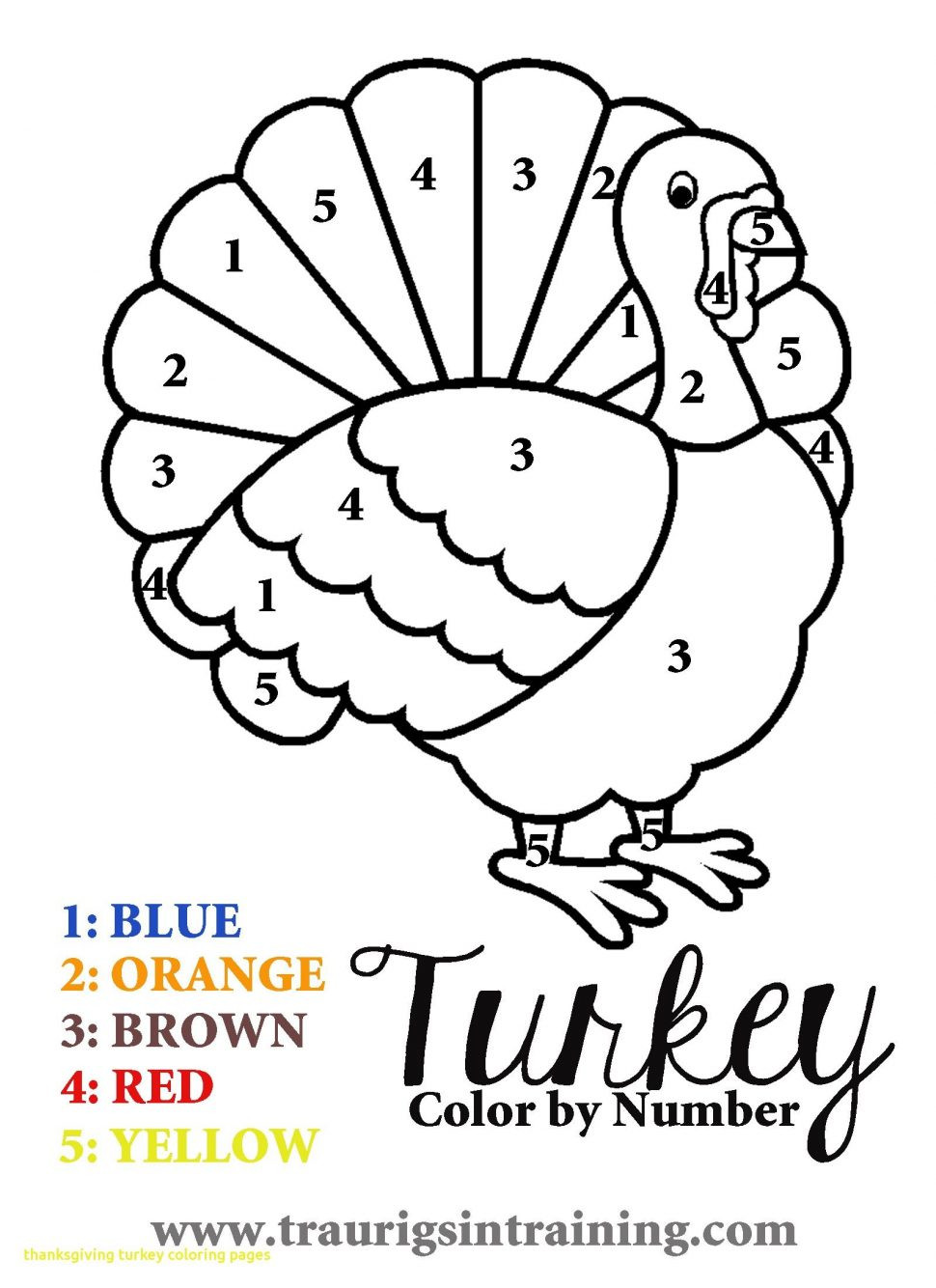 Color by Number Thanksgiving Worksheets