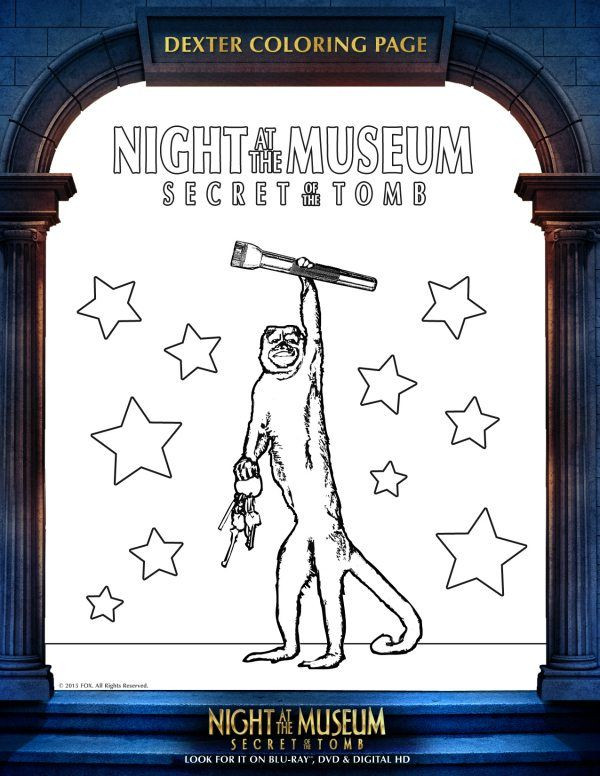 Night at the Museum Worksheet